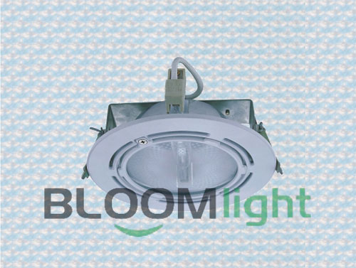 The downlight mainly advantage lies in low carbon energy saving,completely adapt to global energy saving and emission reduction,low carbon lifestyle trend.